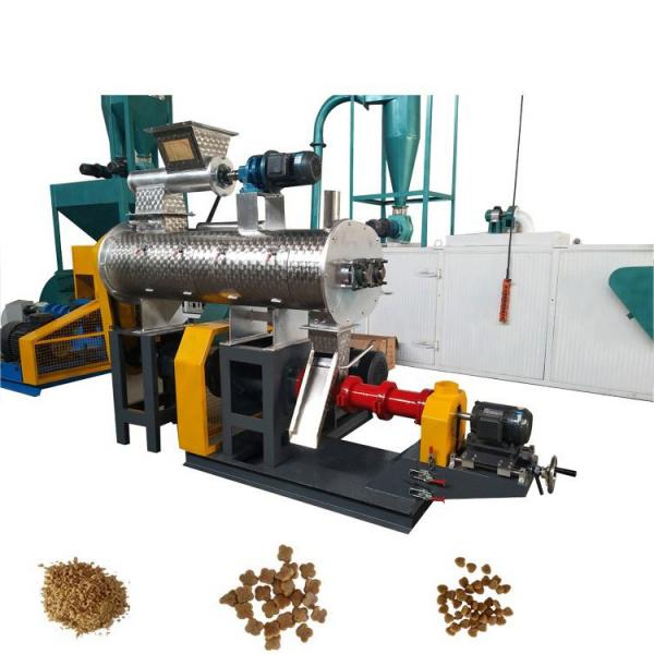 Various Shapes Pet Treats /Dog Chews Snack Food Processing Extruder /Machinery Manufacturer With CE ISO Certificate